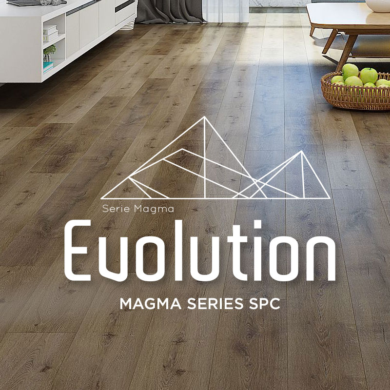 Evolution-category-magma