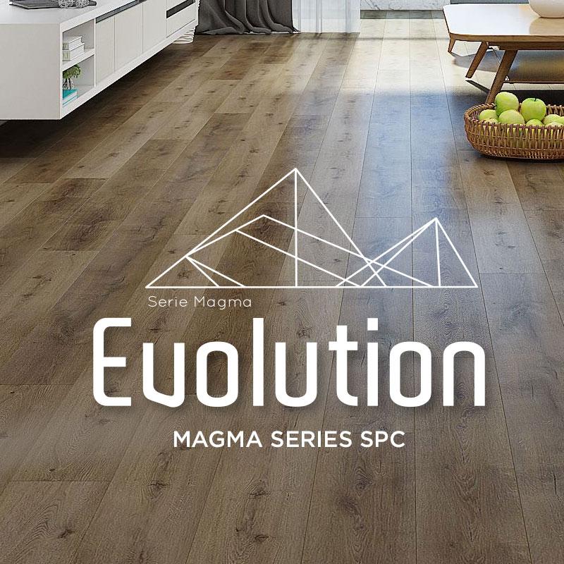 Evolution-category-magma